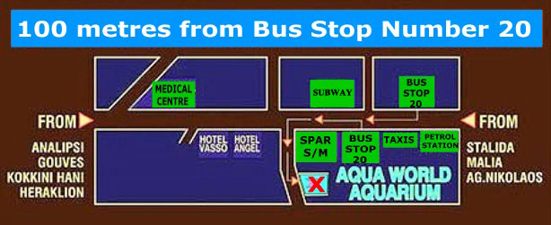 Aquaworld - Crete's first aquarium - location